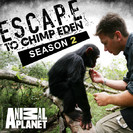 Escape to Chimp Eden: Seven Babies for a New Family, Pt. 2
